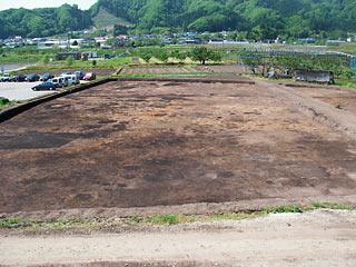 kamioozakuura_20070521_2.jpg