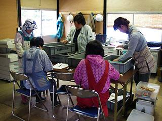 tenyaba-0618-4.jpg