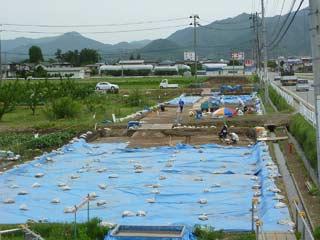 kuguno_0608_1.jpg