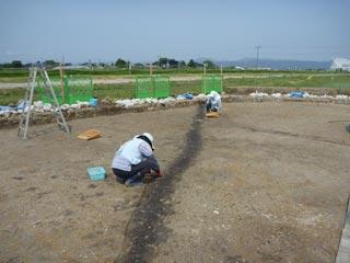 minamiguchi_32.jpg